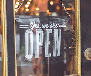 SEO Tauranga agency open for business